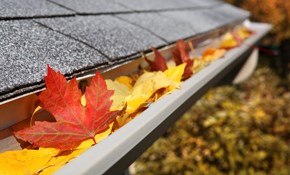 $250 for a Leaf Trap Installation