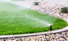 $2,499 for a Five-Zone Rainbird Sprinkler...