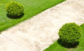 $35 for Concrete Project Consultation with...