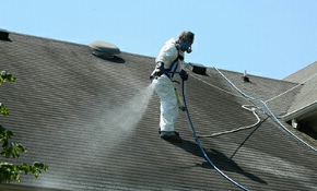 $350 Roof Cleaning