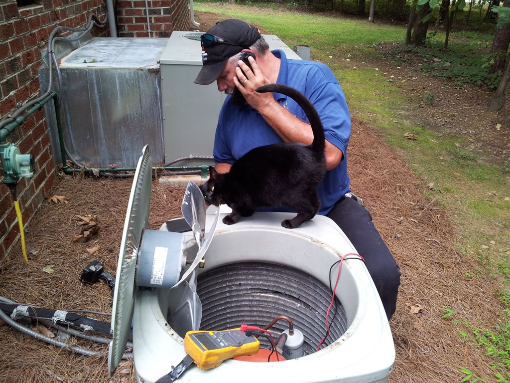 Raleigh Heating Amp Air Raleigh Nc 27615 Angies List