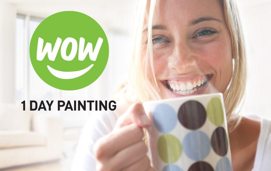 wow 1 day painting brighton mi 48116 angies list