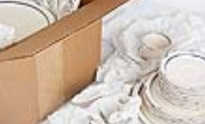 $450 for 5 Hours Professional Packing Service...