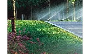 $45 Lawn Irrigation Service Inspection