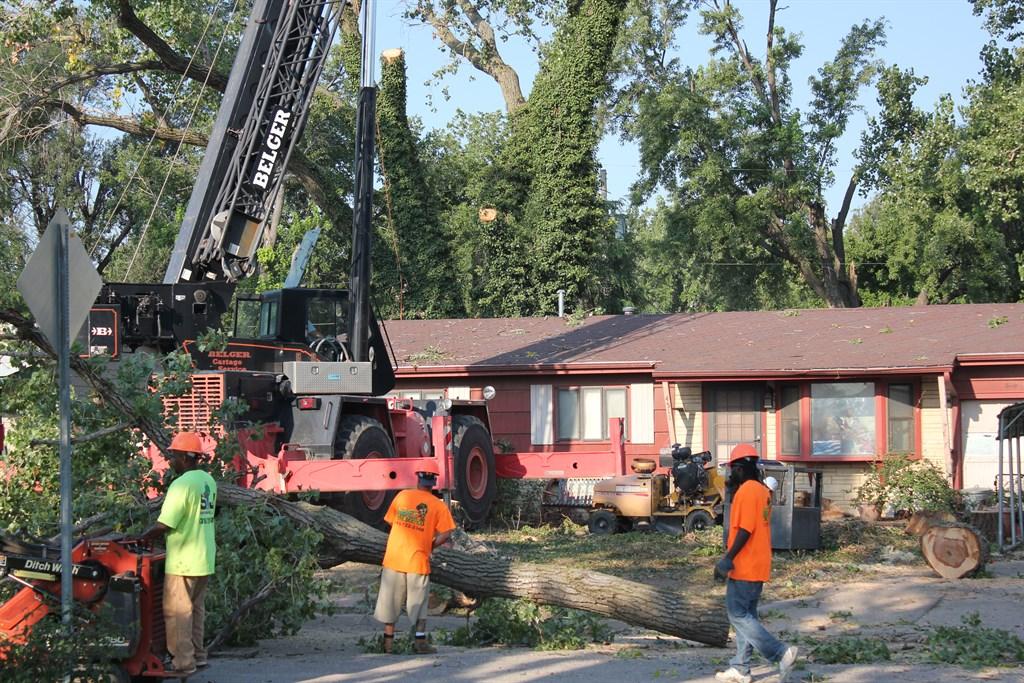 Abe S Lawn Amp Tree Service Wichita Ks 67215 Angies List