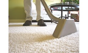 $99 Carpet Cleaning for Three Rooms
