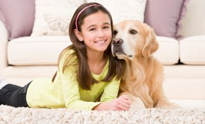 $150 Chem-Dry Carpet Cleaning - Up to 300...