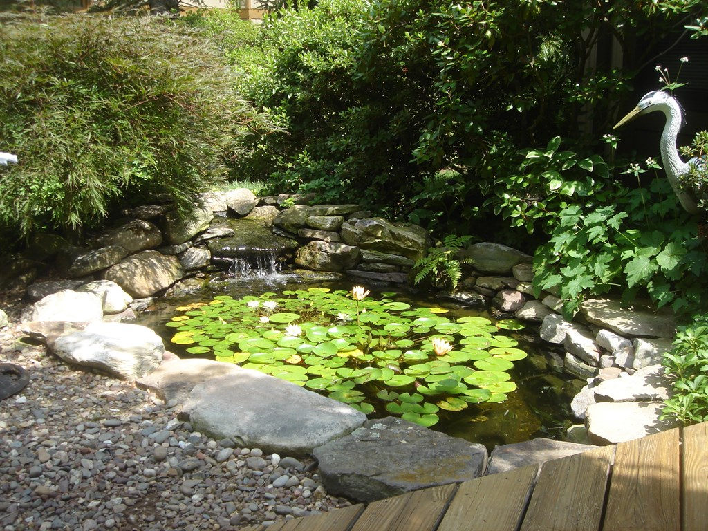 Backyard ponds llc beltsville md 20704 1802 angies list for Garden pond grills