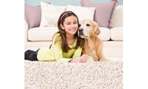 $99 for Eco-Friendly Carpet Cleaning, Deodorizing,...