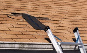 $125 for a Roof Condition Inspection for...