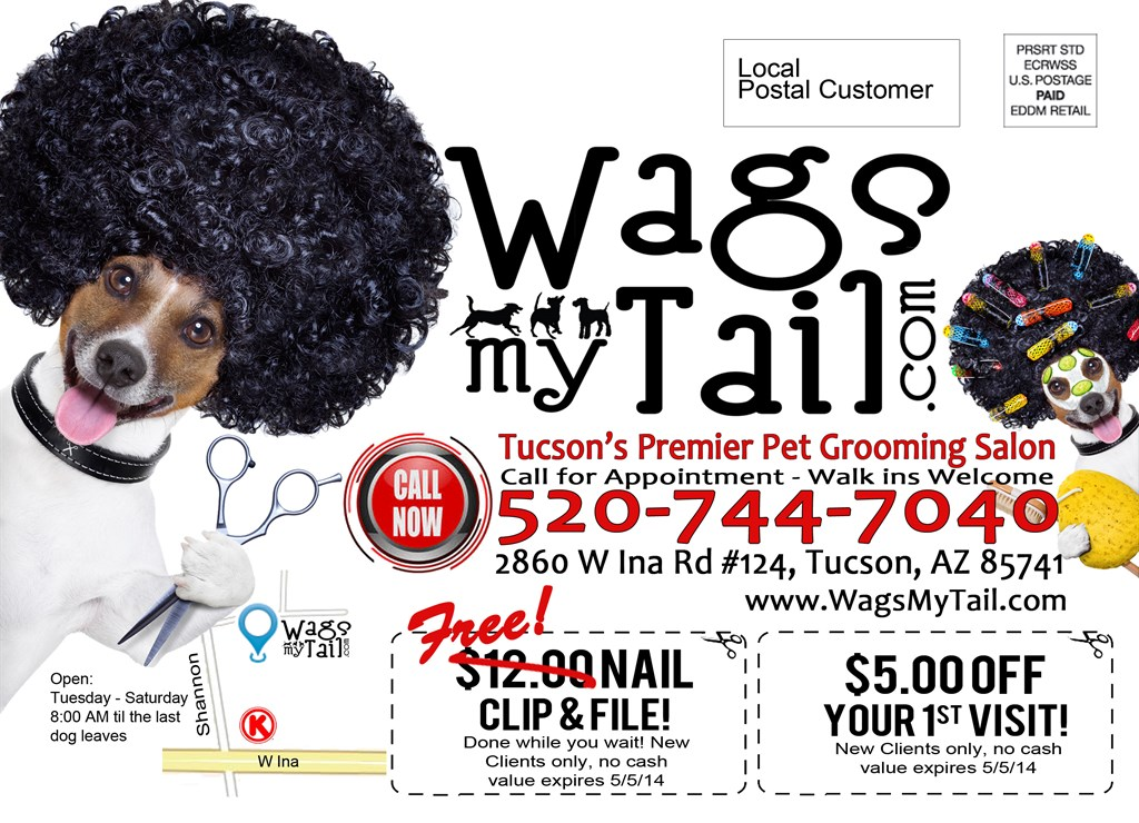 Wags my tail pet grooming tucson az 85741 angies list for A wagging tail pet salon