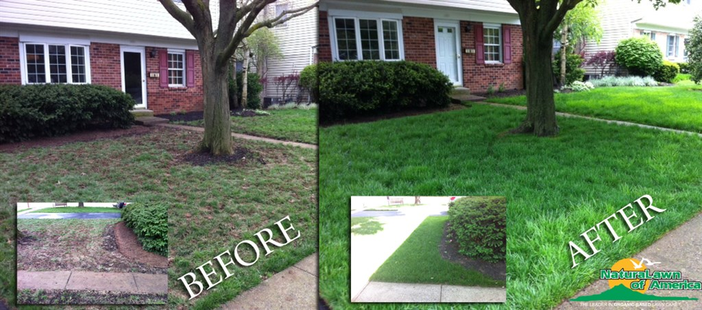 Showcase Landscape has been pleasing customers for the better part of 30 years. We provide Lawn Care & Snow Removal – Lawn Care – Traditional or Organic- Commercial Lawn Maintenance – Mowing, Landscape Design and Landscape Installation, Commercial Irrigation .