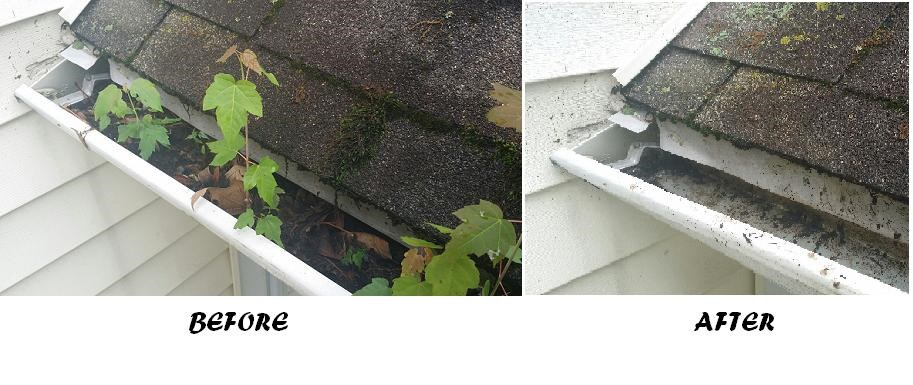 Gutter Cleaning Coupon in the ONLINE Offers!
