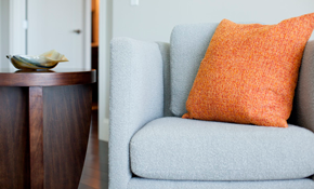 $99 for Upholstery Cleaning Package