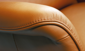 $250 for Leather Upholstery Cleaning and...