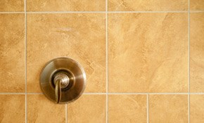 $150 for Cleaning of a Large Walk-In Shower