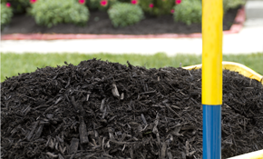 $199 for 5 Cubic Yards of Premium Dyed Mulch...