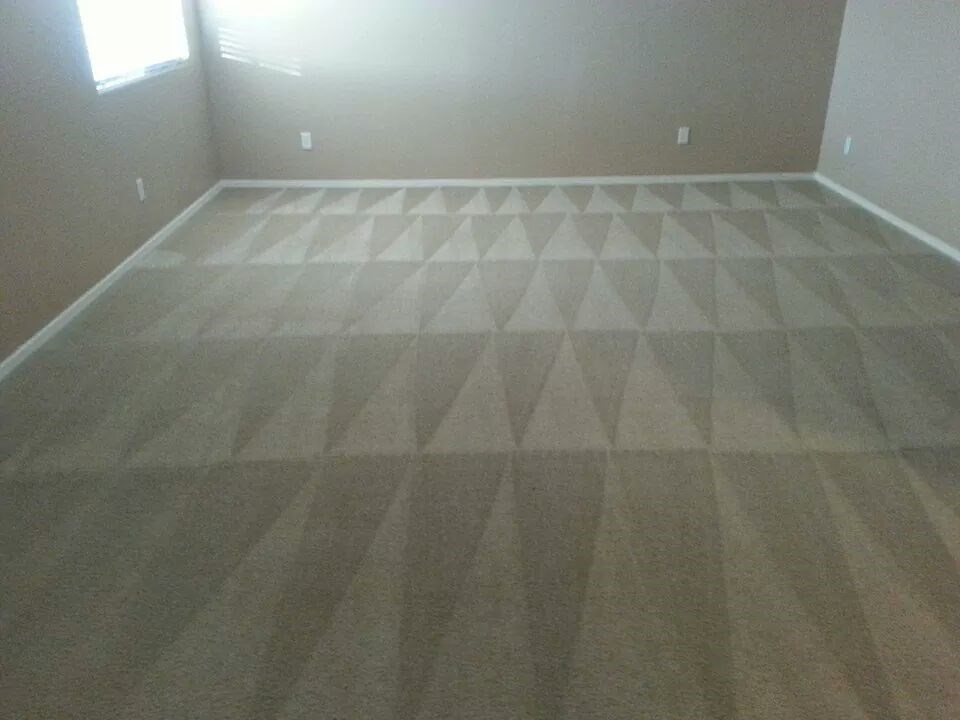 how to clean whole carpet
