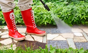 $99 Sidewalk and Patio Pressure Washing