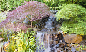 $3,995 for a Pondless 4 Foot Long Waterfall...