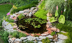 $7,795 for a Complete Pond with Waterfall...