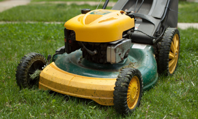 $85 for Push Lawnmower Service