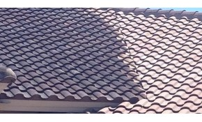 $595 for Gentle Wash Roof Cleaning