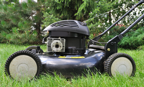 $40 for Lawnmower Inspection