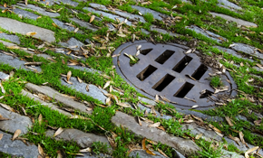 $65 Toward Sewer Line Inspection or Service...