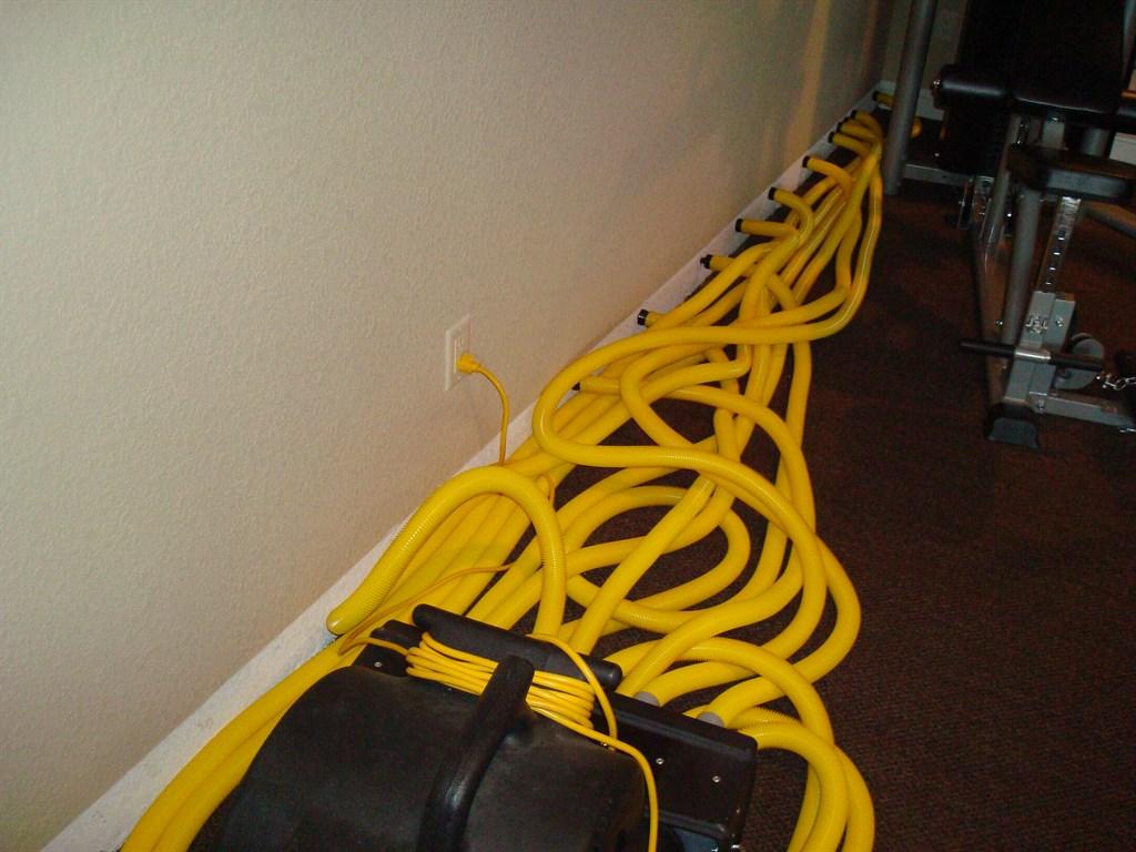 Full Service Carpet Repair