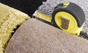 $1,500 for 750 Square Feet of Carpet Including...