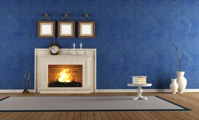 $95 for a Gas Log Wood Burning Fireplace...