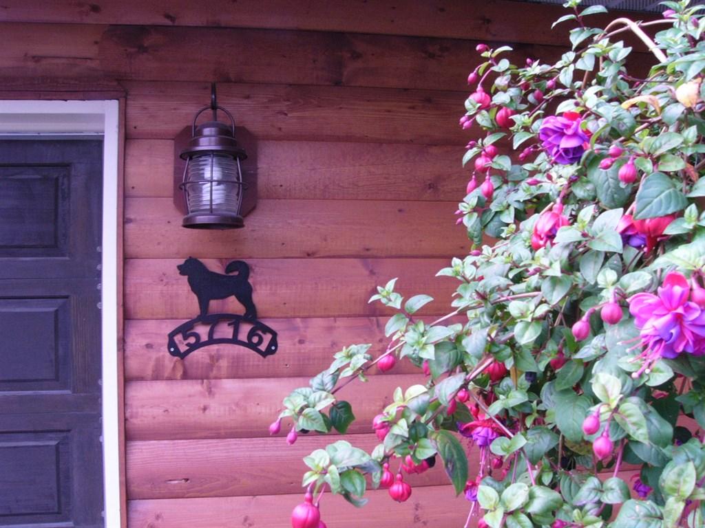 Dog Boarding Anchorage Reviews