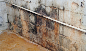 $25 for $100 Toward Crawlspace Encapsulation