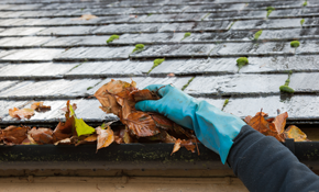 $144 for Gutter Cleaning and Roof Debris...