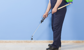 $150 for a One-Time Pest Control Service