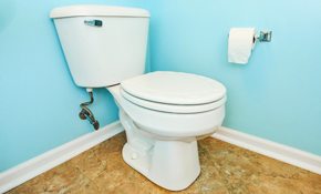 $550 for a New Toilet Installed