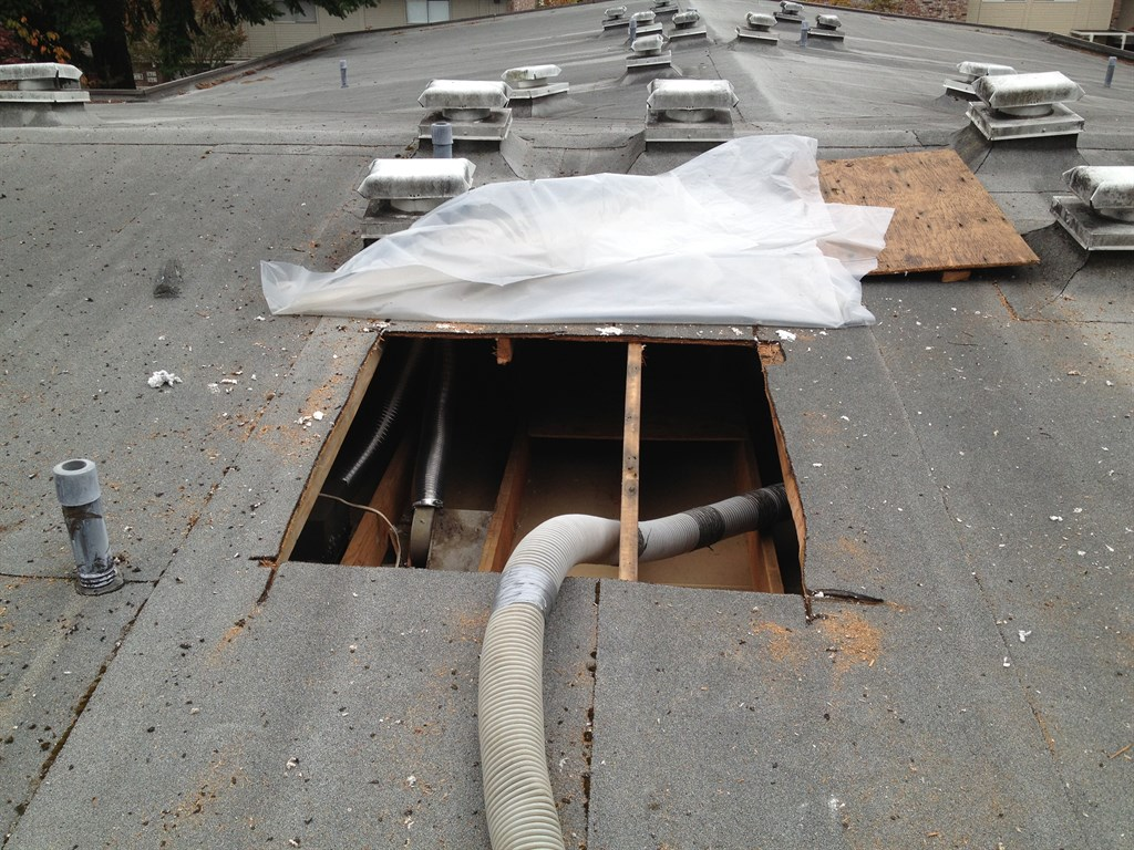 Edmonds Shoreline Roof Amp Gutter Service Edmonds Wa