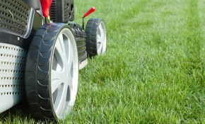 $1,125 for One-Year Lawn Mowing