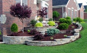 $99 for a Professional Landscape Design and...