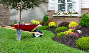 $139 for 4 Hours of Lawn or Landscape Work