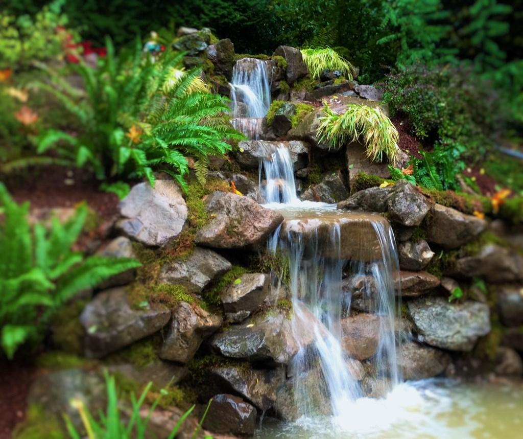 Affordable Ponds Llc Vancouver Wa 98665 Angies List