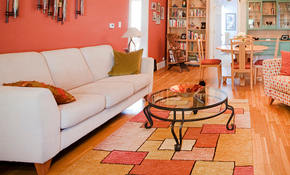 $385 for 1 Oriental Rug Cleaning for 10'...