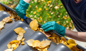 $110 for Unlimited Gutter Cleaning, Gutter...
