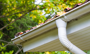 $119 Gutter Cleaning Including Downspouts
