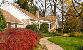 $99 for Four Hours of Fall Lawn or Landscape...