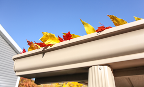 $162 for Gutter Cleaning Including Downspouts,...