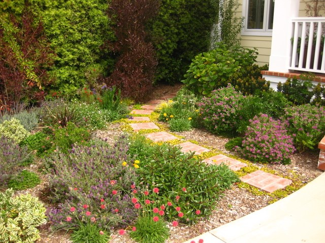 Earth element designs la mesa ca 91941 angies list for Earth designs landscaping