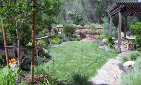 $449 for a Professional Landscape Design...