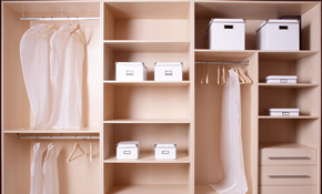$299 for 4 Hours of Professional Home Organization